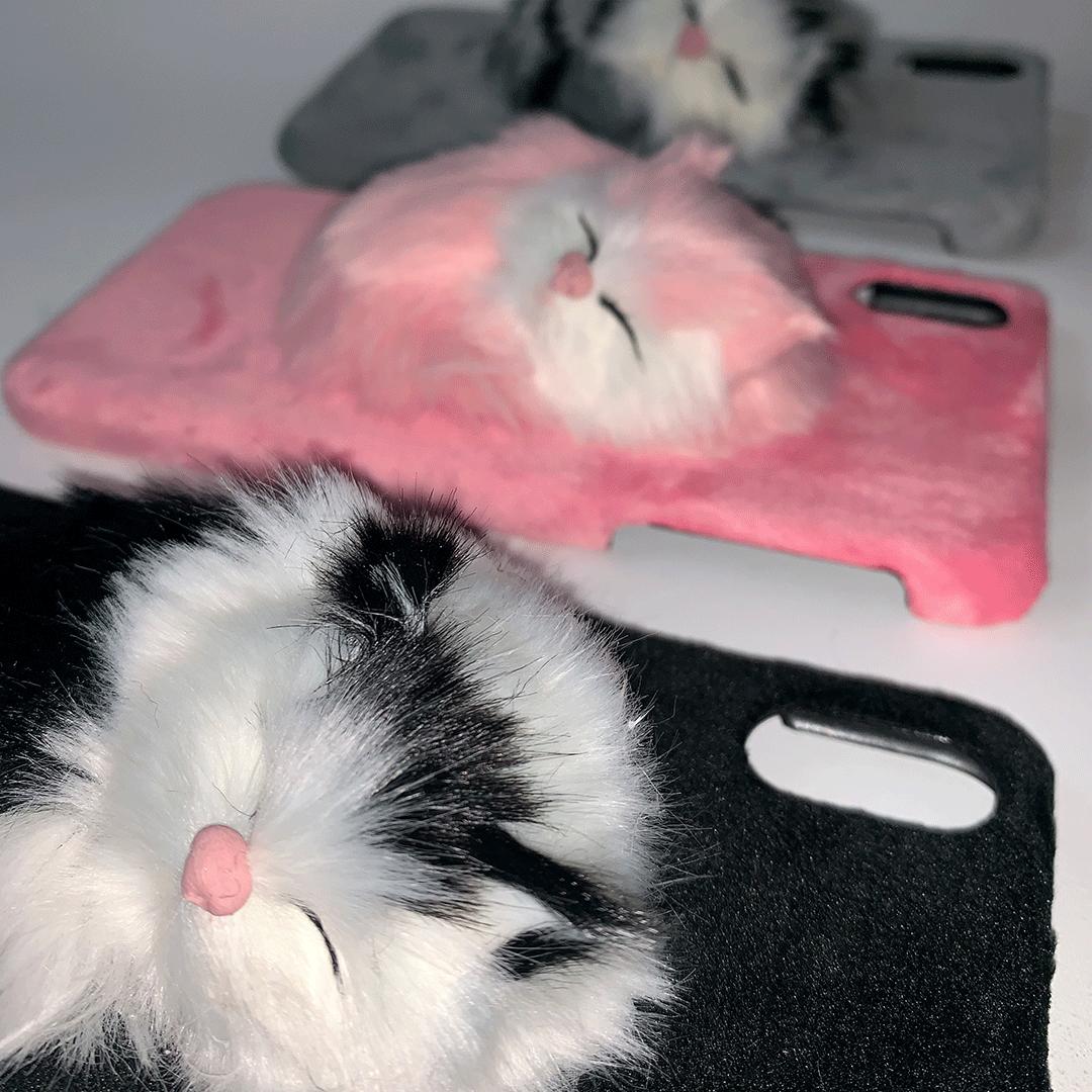 carcasas-gatos-lado