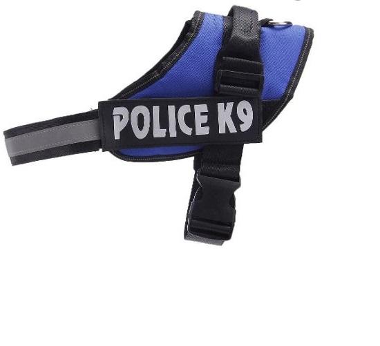 arnes police azul