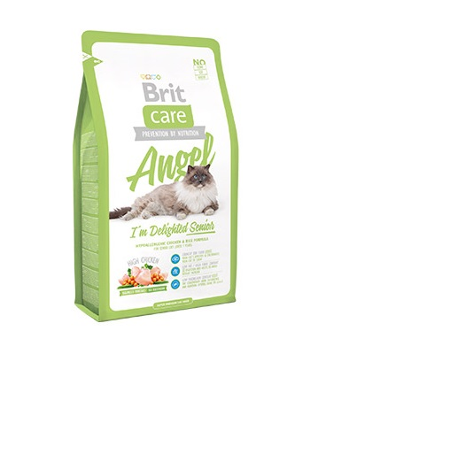 brit care angel 2 kg